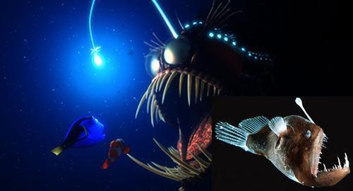 anglerfish_nemo
